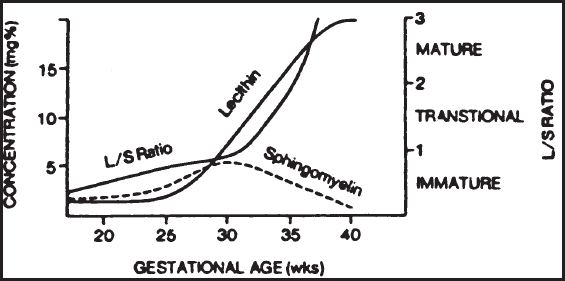 Fetal lung maturity ratio